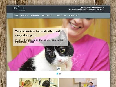 Ossicle Home surgeon vet wordpress website