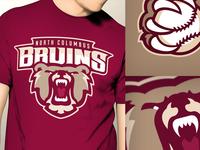 Bruins Baseball Rebrand