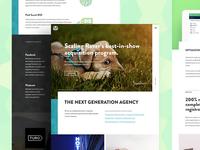 Bamboo Website