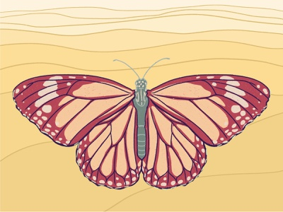 Traveling Monarch landscape illustration landscape monarch butterfly procreate art procreate illustration portland
