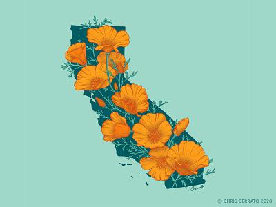 California in Bloom map art map golden poppy poppy poppies california freelance artwork drawing flowers illustrator design art illustration