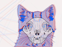 Cat X Ray