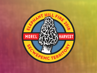 Elephant Hill Fire - Morel Harvest Permit Decal