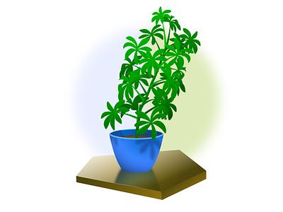 Umbrella Tree study digital illustration foliage prop plant illustrator