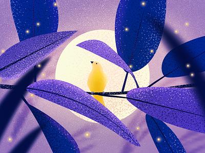 Illustrator - Nightingale illustrations photoshop
