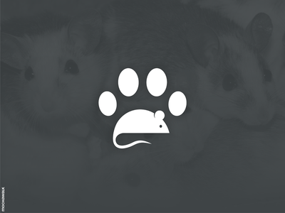Catch Mouse icon design logomark logodesign logo animal cat paw mice mouse