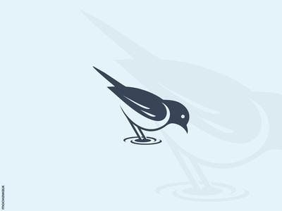 Bird Logo design logomark logodesign logo wave ripple water animal bird