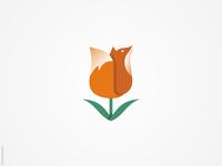 Tulip + Fox