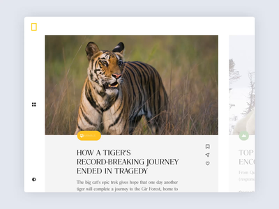 009 Article Page Swipe mobile article icons swipe ui typography web flatdesign flat orthonormai interaction tiger animals branding animation national geographic