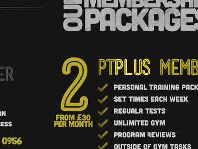 Price Packages Triptych web design ux design graphic design typography