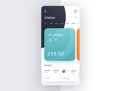 ToucanPay App ineraction currency business ux ui blockchain motion principle android animation interface design application product mobile
