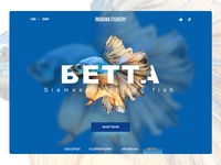 Fishery online store - web