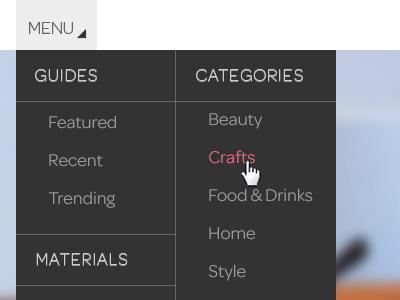 Dropdown Menu dropdown menu web header information black grey pink white blur chrome browser