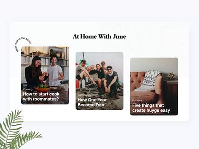 ✍ New Blog Cards | June Homes blog post blog design blog homes realestate plant furniture web website website design pattern article articles blog cards cards