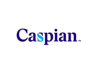 Caspian logaze lettering typography azerbaijan baku water fish sea logo