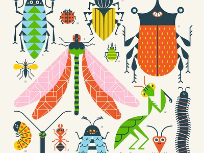 Insects! animal illustration character illustration vector illustration dragon fly schoolposter loulou and tummie insects poster loulou tummie insect illustration insects bugs