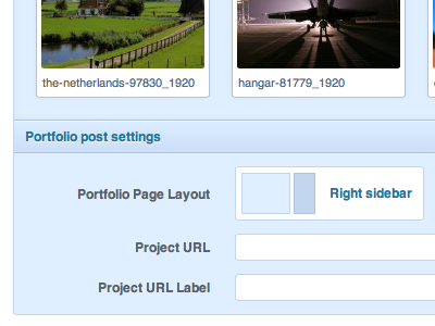 Portfolio Post Settings wordpress blue clean css3 form gallery input