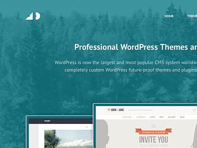New personal website portfolio wordpress video background skrollr