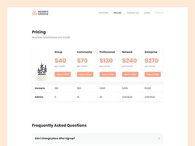 Membergrооve – Pricing landing plan offer price sketch design ui ux web digital minimal page
