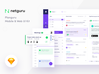 Planguru UI Kit Freebie - Case Study