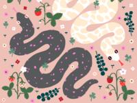 Snakes & Strawberries