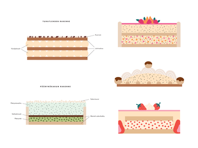 Cake Recipe Infographics
