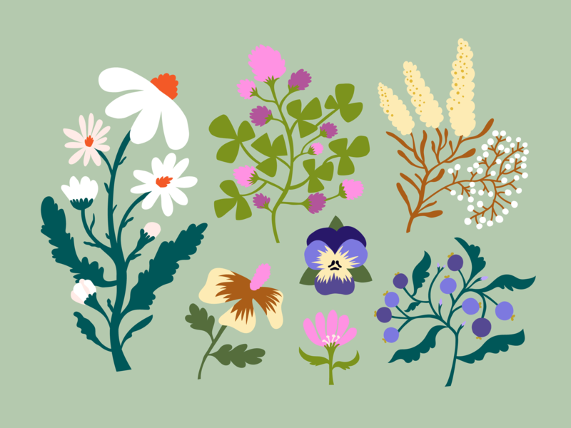 Flower sketches flat illustration flat style plant illustration color harmony cute mixed media vector art florals friendly sweet scandinavian flowers flowers illustration nature pastels illustration colorful leena kisonen flat color