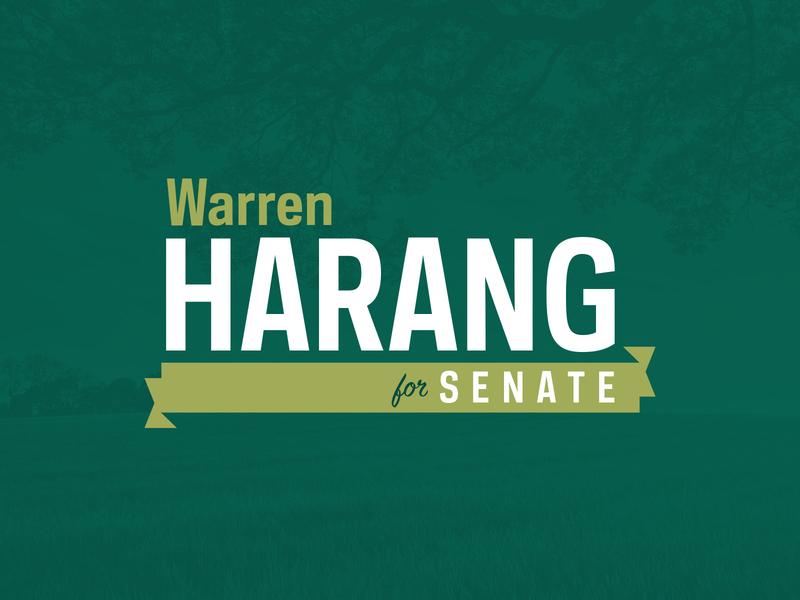 Senate Campaign branding brand logo ribbon typography rustic rural green political campaign political politician politics campaign
