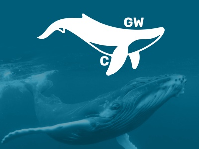 Great Whale C. animal illustration whale logo