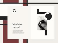Czech Avantgarde