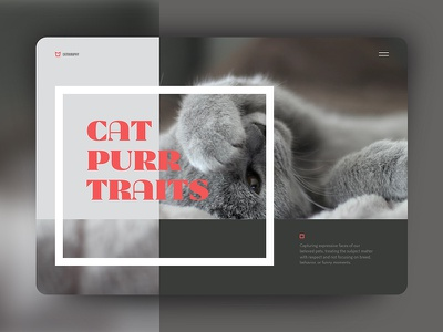 Purrtraits portfolio portrait photography cat art direction layout ui