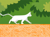 The white cat in the park