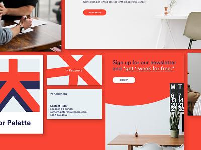 Samples 2 navy orange palette color business card namecard pring