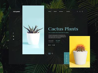 Cactus Plants Shop ui design challenge landing page sri lanka simple uikits shop uipractice concept green cactus plants web design ecommerce ui design design typography ui ux branding
