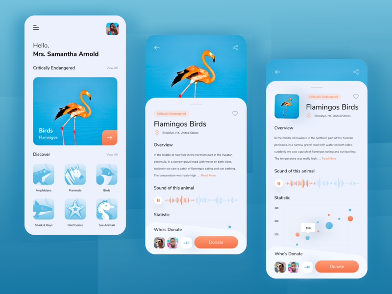 Qeywaned - Animal Conservation App forest animals blue orange flamingos birds app design ios mobile design sketch forest donation donate conservation charity animals illustrations clean ux ui