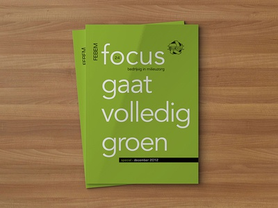 FEBEM magazine magazine editorial design graphic design