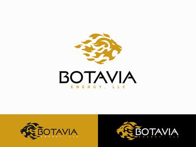 Botavia Energy