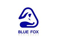 Blue Fox Mediahaus V3