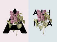A  is for Alina