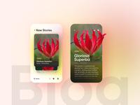 Daily UI#007 Blog Modern Card UI