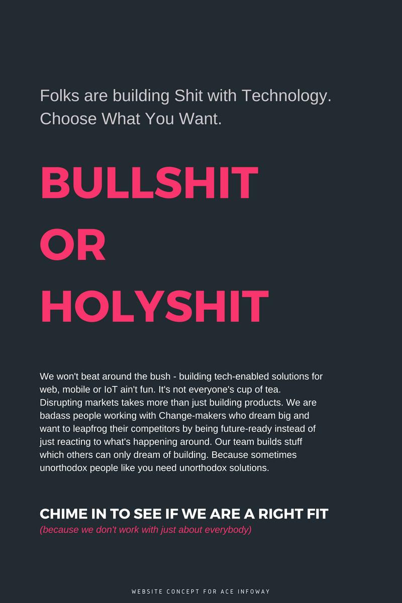 Ace infoway website concept copy
