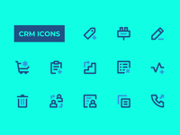 CRM Icons
