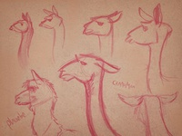 Live animals sketched at an art reception #2