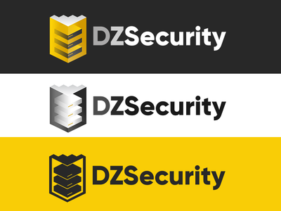 DZSecurity logo