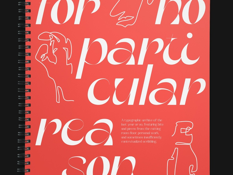 For No Particular Reason illustration book print lettering typeface type