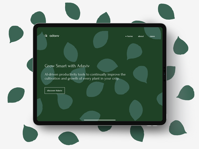 New project for a new portfolio! aidesign websitedesign portfolio uxui uxdesign website