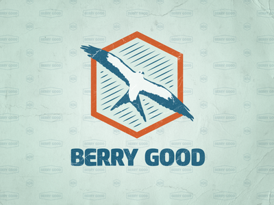 Berry Good logo, identity logotype design vector bird illustration hardware vintage branding identity branding identity logo