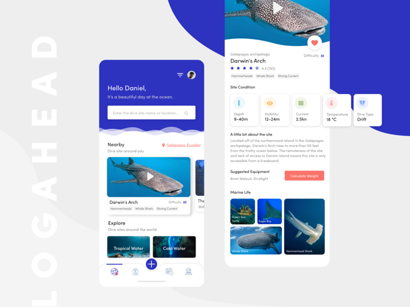 Logahead Diving App redesign modern travel design mobile colors stats scuba iphone diving animation ux ui ios interface clean app
