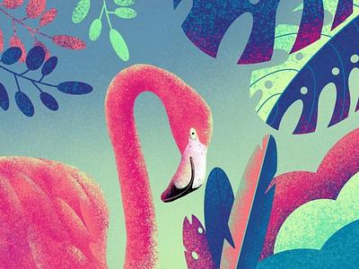 Flamingo picture creative dribbble flamingo artist procreate design 2020 illustration art