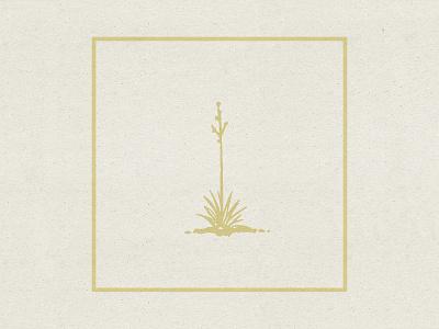 The Mild Mild West succulent texture west album music desert album art design illustration